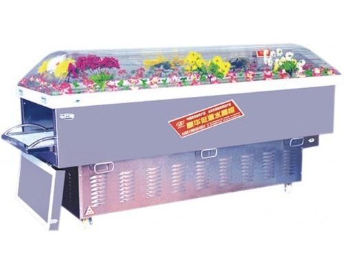 冰柜百丈山BZS-b3冰棺水晶棺系列