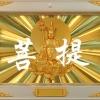 怀念堂单穴骨灰柜面板用途形状照片殡葬用品