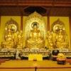 寺庙佛教佛像大殿设计图梵园