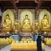 寺院佛教佛像大殿设计效果实例图梵园