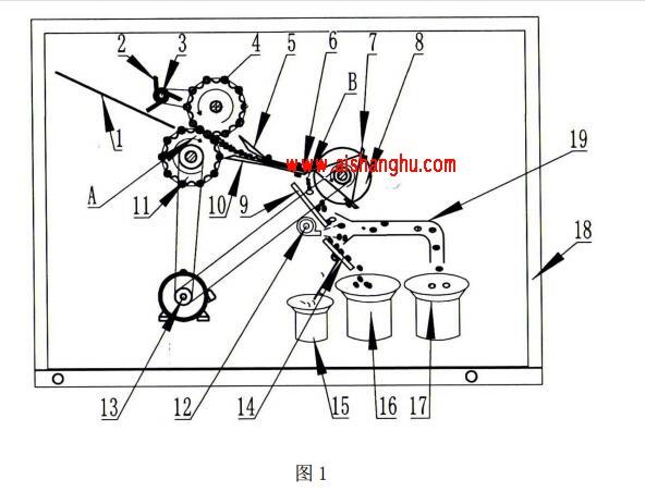 进料室内设有托板1、进料辊2、主动轴11、从动辊4、定向板5、 接料板10和动力电机13,进料辊2设有进料轴3。主动轴11通过皮带 或链条与动力电机13的输出轴连接,进料轴3通过皮带或链条与动力电 机13的输出轴连接。托板1向下倾斜5°~45°(以水平面为基准)设 置,倾斜角度优选为30°。进料辊2设置在托板1的下端上方位置。从 动辊4和主动轴11相对设置,托板1的末端位于从动辊4和主动轴11 的左侧圆周夹角处。接料板10位于从动辊4和主动轴11的右侧圆周夹 角处,定向板5位于接料